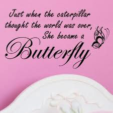 [butterfly-pic]